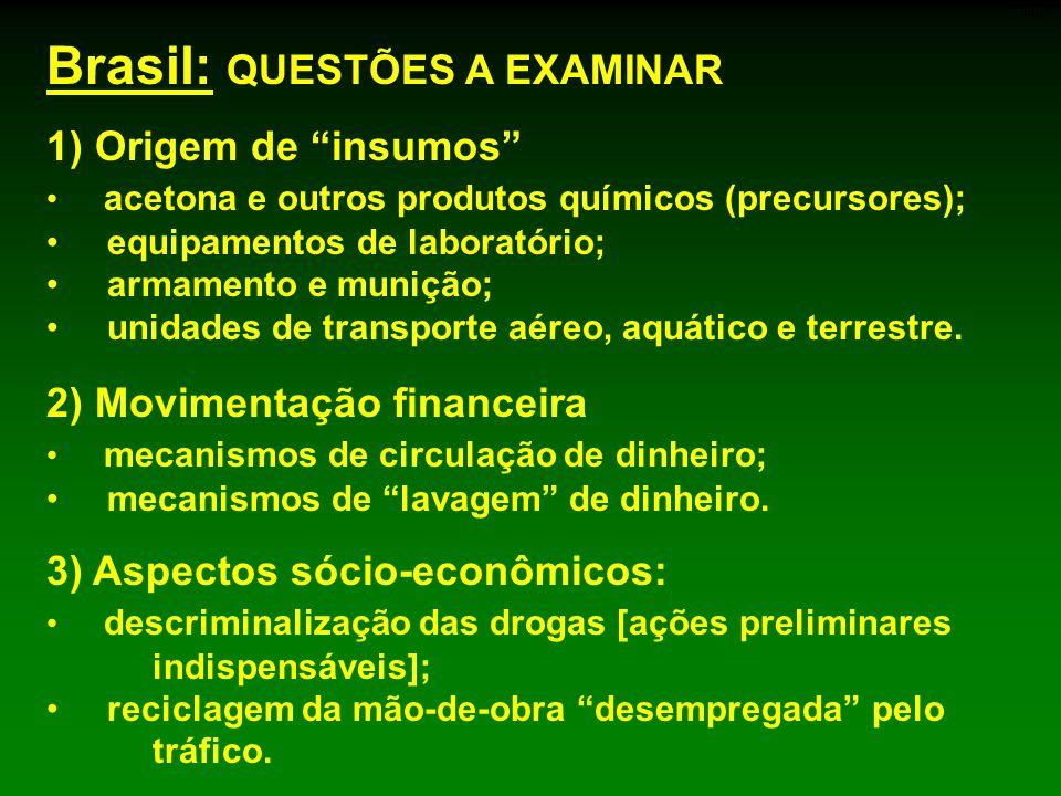 Brasil: QUESTÕES A EXAMINAR