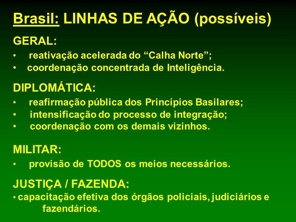 Brasil: LINHAS DE AÇÃO (possíveis)
