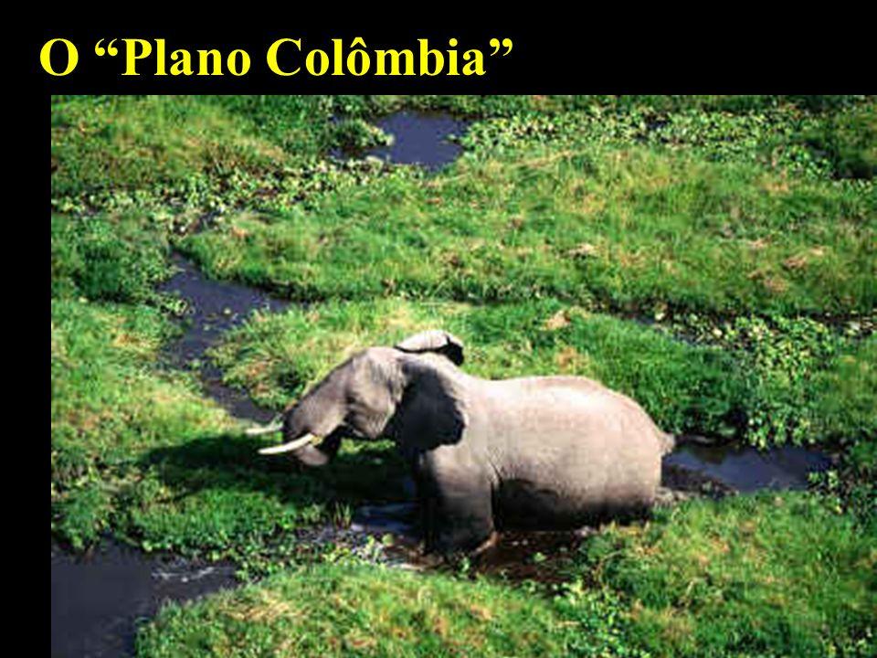 mhcc O Plano Colômbia