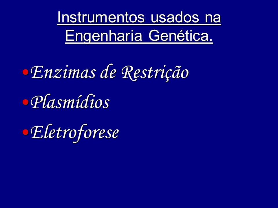 Instrumentos usados na Engenharia Genética.