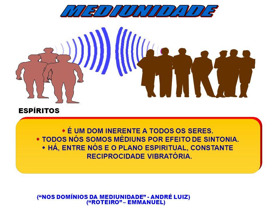 MEDIUNIDADE ESPÍRITOS  É UM DOM INERENTE A TODOS OS SERES.