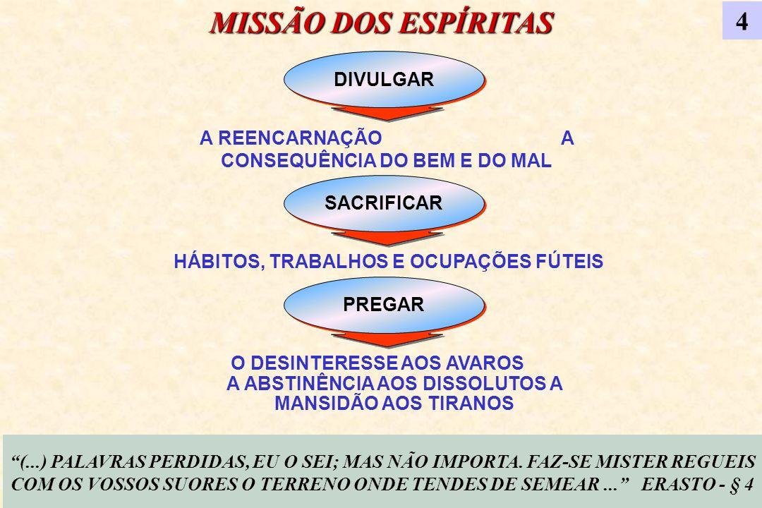 MISSÃO DOS ESPÍRITAS 4 DIVULGAR