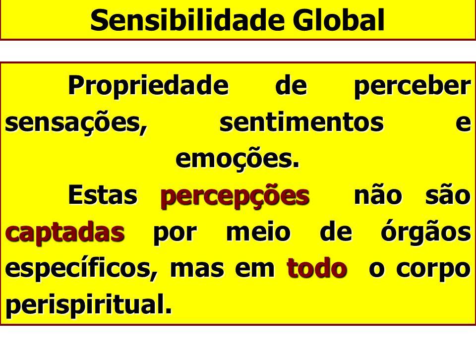 Sensibilidade Global