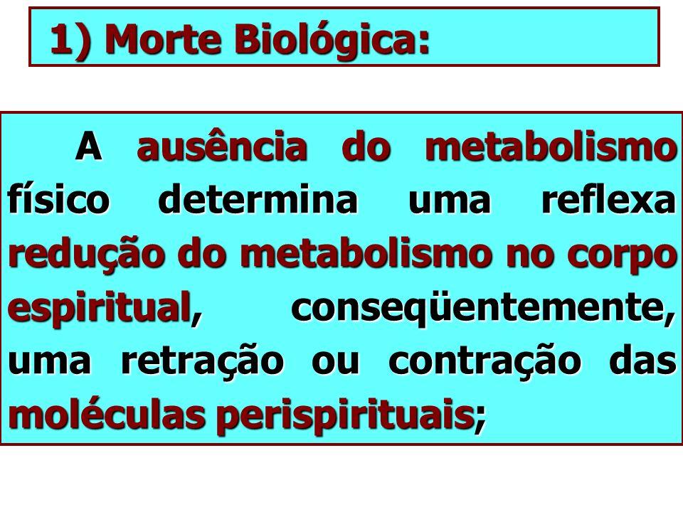 1) Morte Biológica: