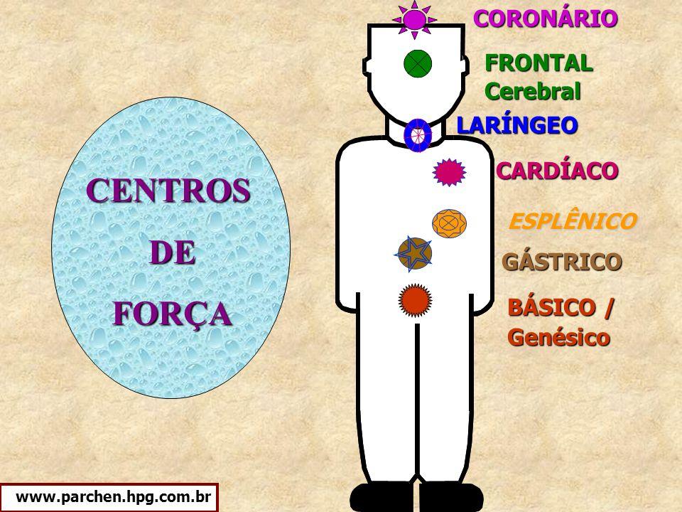 CENTROS DE FORÇA CORONÁRIO FRONTAL Cerebral LARÍNGEO CARDÍACO GÁSTRICO