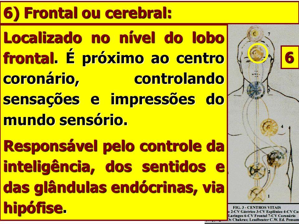 6) Frontal ou cerebral: Localizado no nível do lobo frontal. É próximo ao centro coronário, controlando sensações e impressões do mundo sensório.