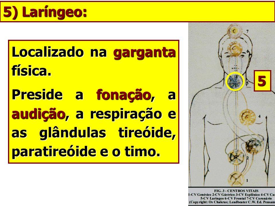 5) Laríngeo: Localizado na garganta física. Preside a fonação, a audição, a respiração e as glândulas tireóide, paratireóide e o timo.