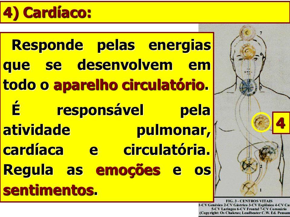 4) Cardíaco:Responde pelas energias que se desenvolvem em todo o aparelho circulatório.
