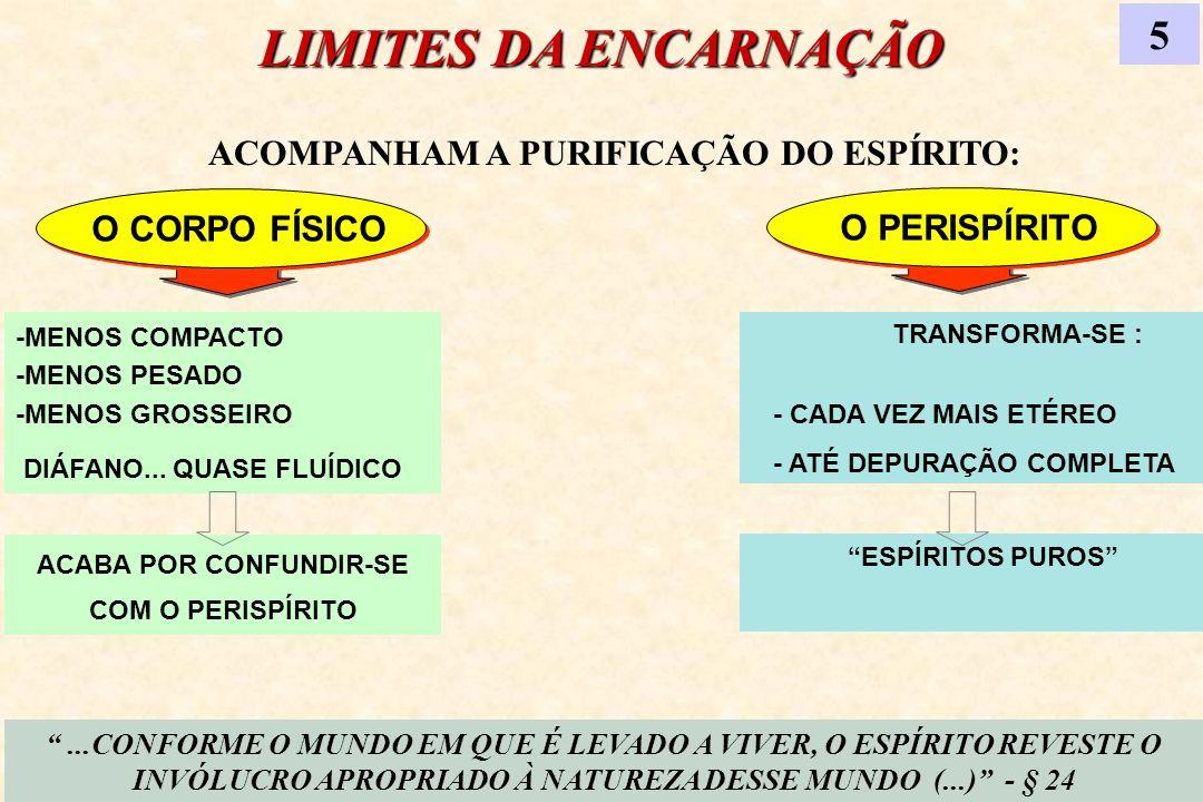 LIMITES DA ENCARNAÇÃO 5 ACOMPANHAM A PURIFICAÇÃO DO ESPÍRITO:
