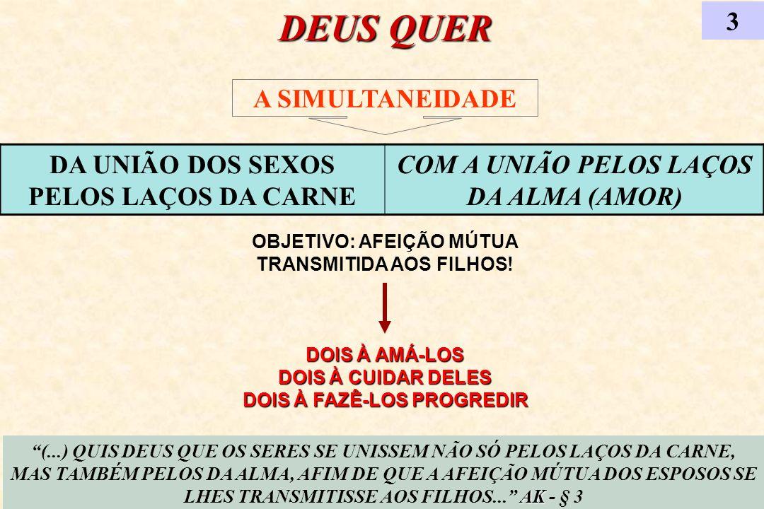 DEUS QUER 3 A SIMULTANEIDADE DA UNIÃO DOS SEXOS PELOS LAÇOS DA CARNE
