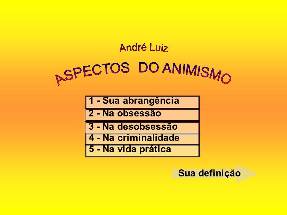 André Luiz ASPECTOS DO ANIMISMO 1 - Sua abrangência 2 - Na obsessão