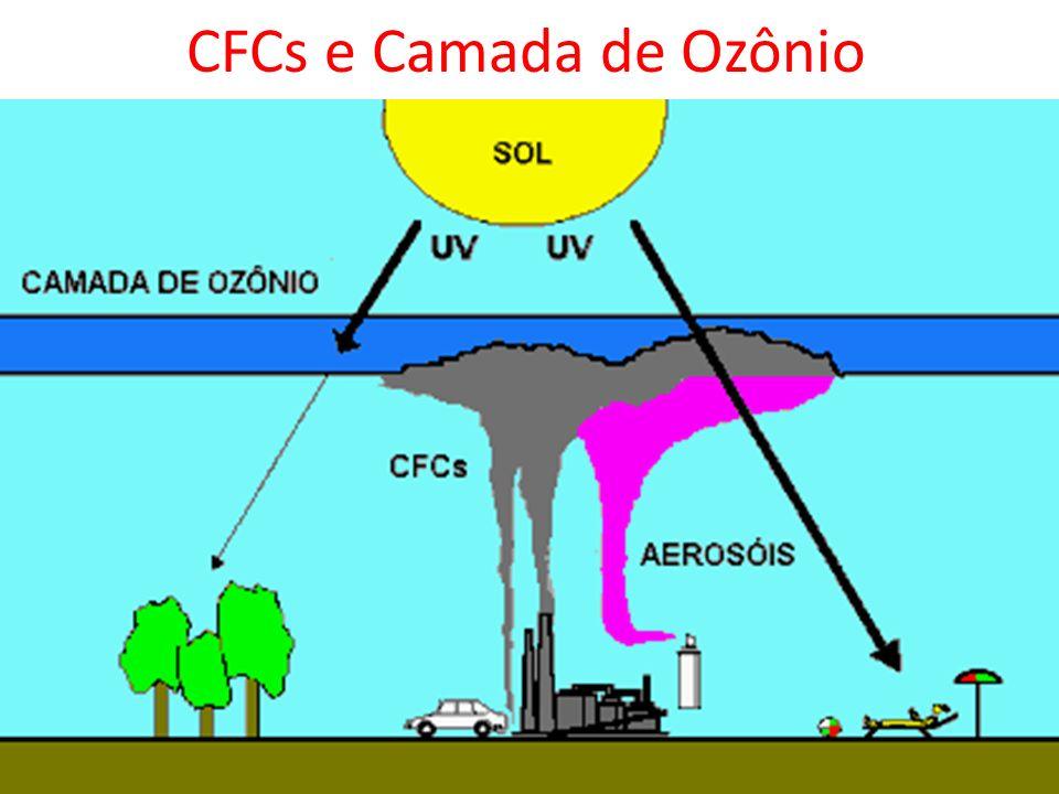 CFCs e Camada de Ozônio