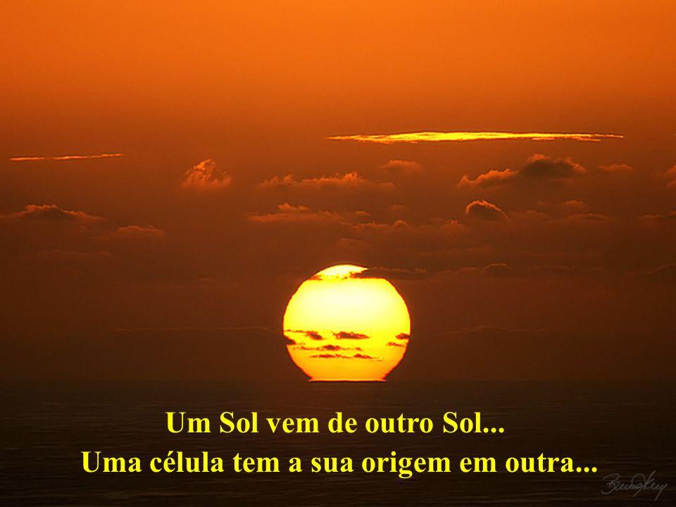Um Sol vem de outro Sol... Uma célula tem a sua origem em outra...