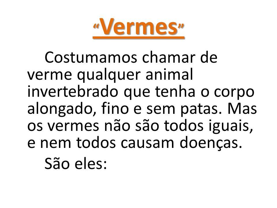 Vermes