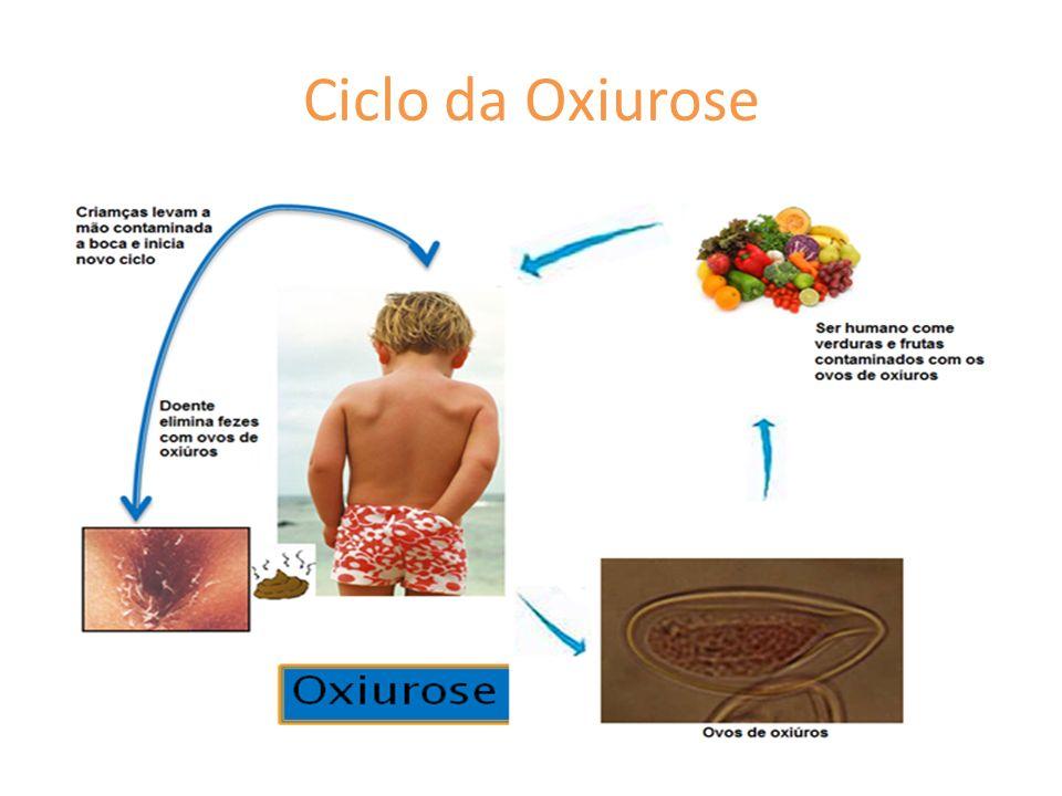 Ciclo da Oxiurose