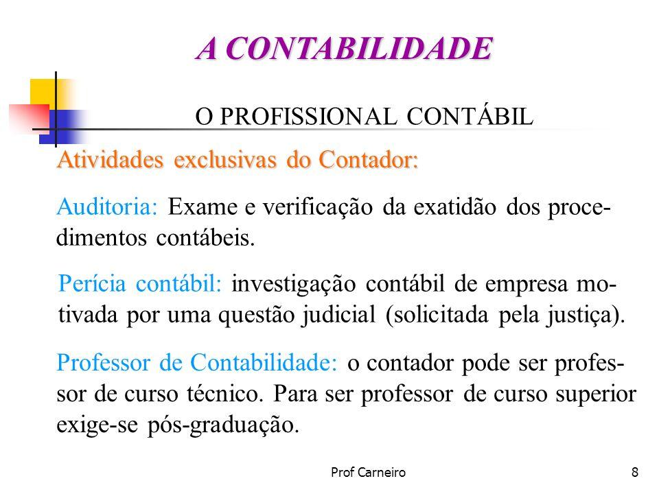 A CONTABILIDADE O PROFISSIONAL CONTÁBIL