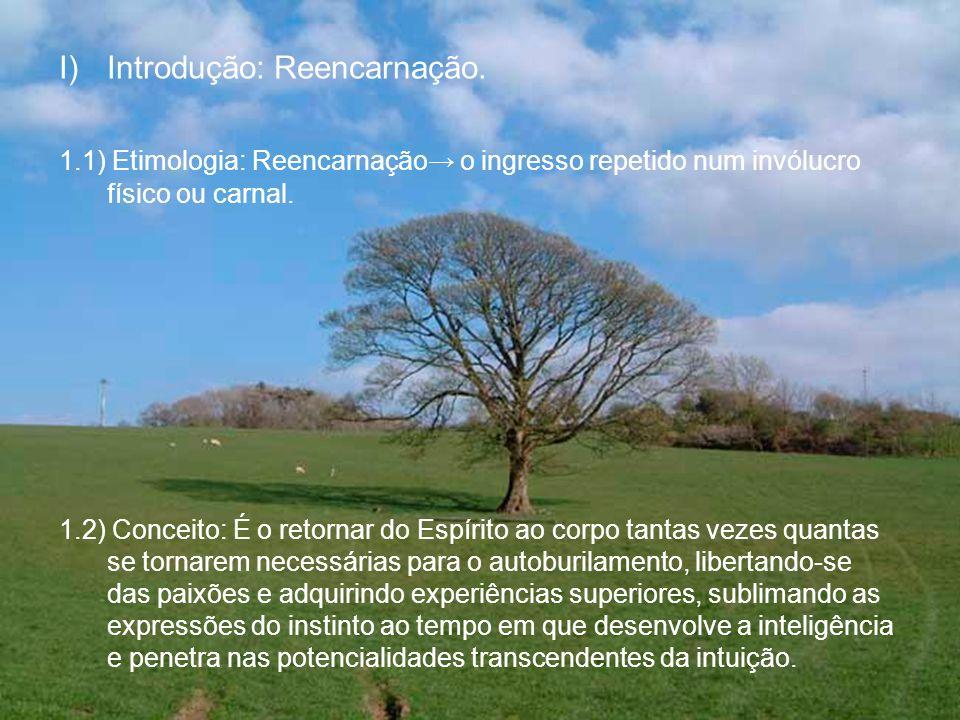 Introdução: Reencarnação.