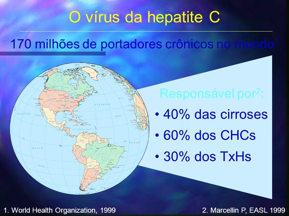 O vírus da hepatite C 40% das cirroses 60% dos CHCs 30% dos TxHs