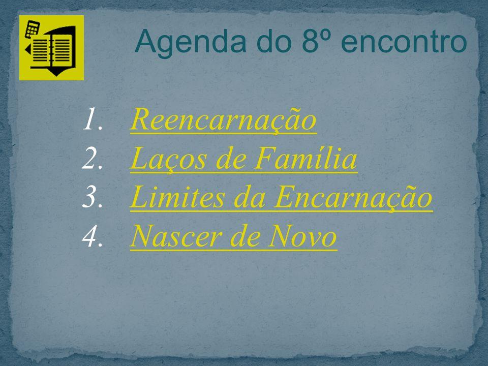 Agenda do 8º encontro Reencarnação Laços de Família Limites da Encarnação Nascer de Novo