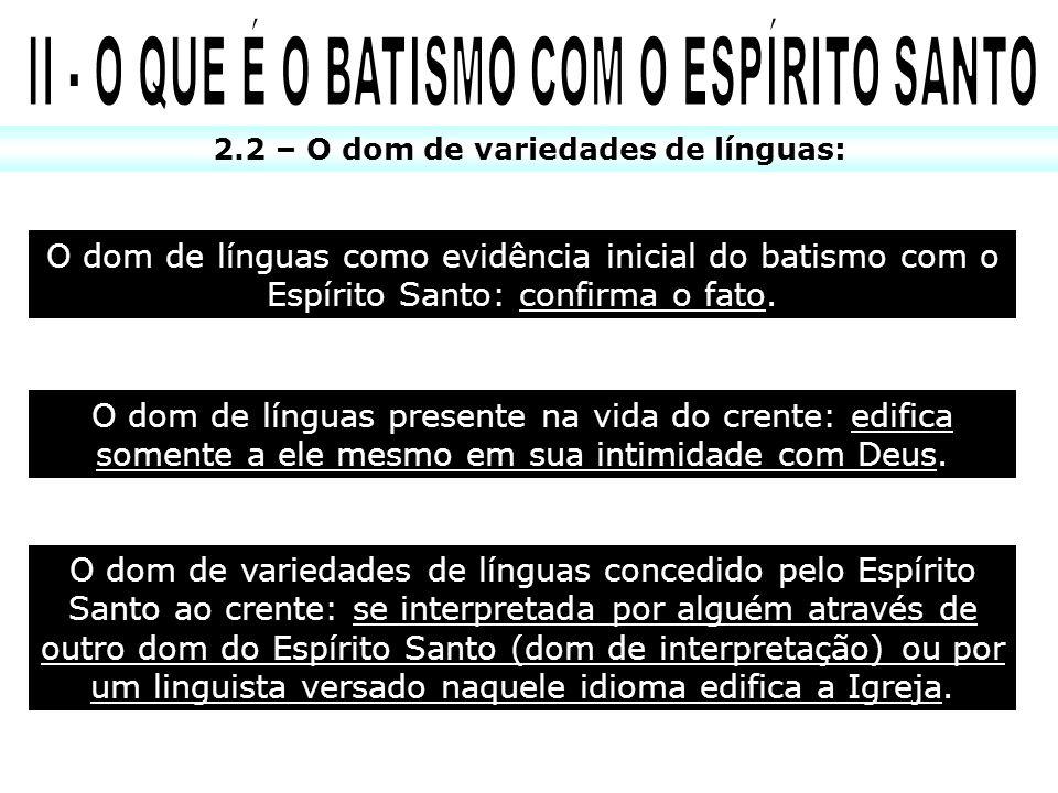 II - O QUE É O BATISMO COM O ESPÍRITO SANTO