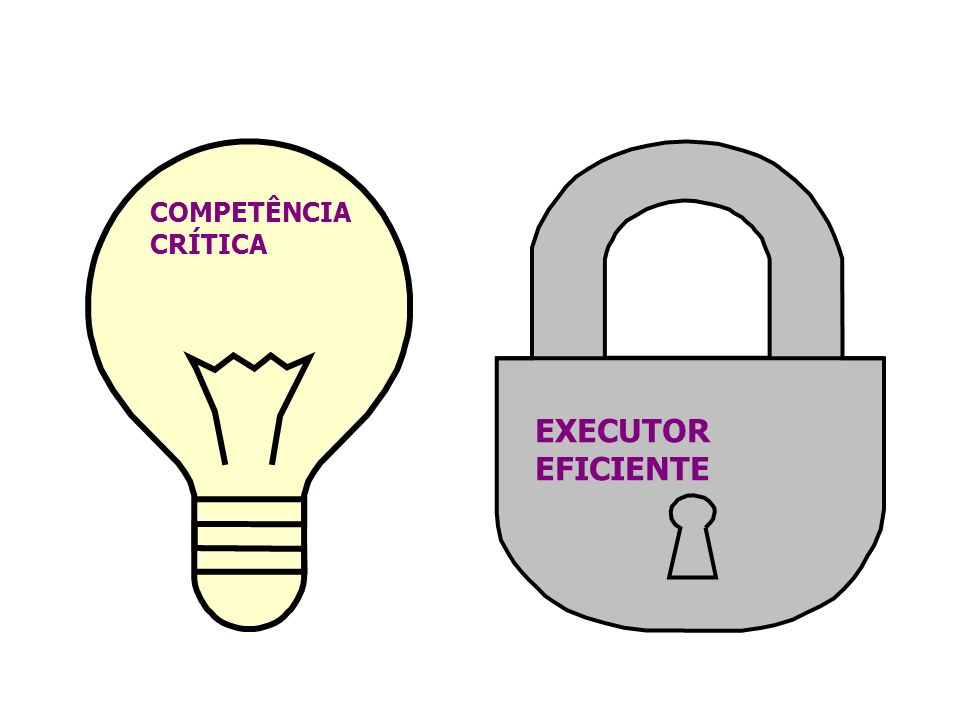 COMPETÊNCIA CRÍTICA EXECUTOR EFICIENTE