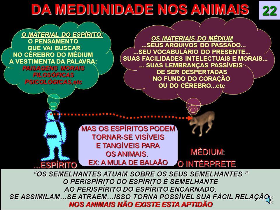 DA MEDIUNIDADE NOS ANIMAIS