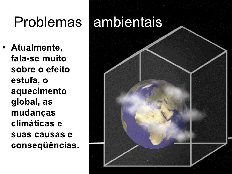 Problemas ambientais Atualmente, fala-se muito sobre o efeito estufa, o aquecimento global, as mudanças climáticas e suas causas e conseqüências.