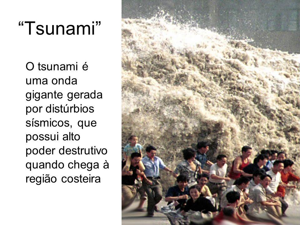 Tsunami O tsunami é uma onda gigante gerada por distúrbios sísmicos, que possui alto poder destrutivo quando chega à região costeira.