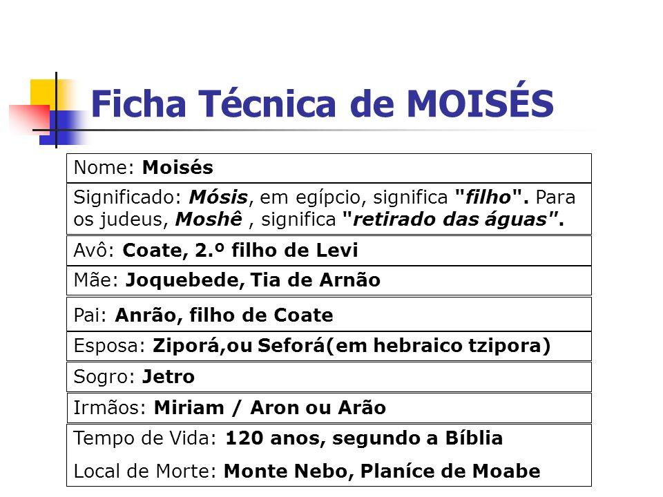 Ficha Técnica de MOISÉS