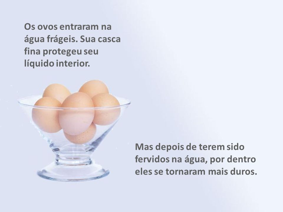 Os ovos entraram na água frágeis