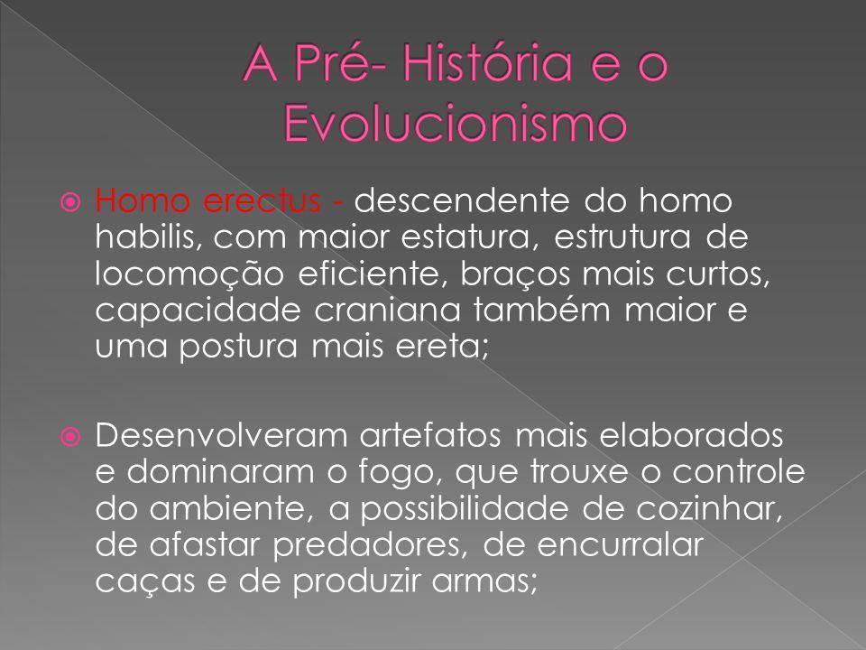 A Pré- História e o Evolucionismo