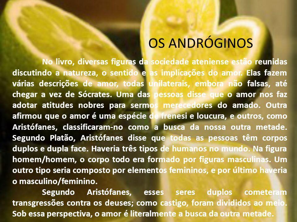 OS ANDRÓGINOS