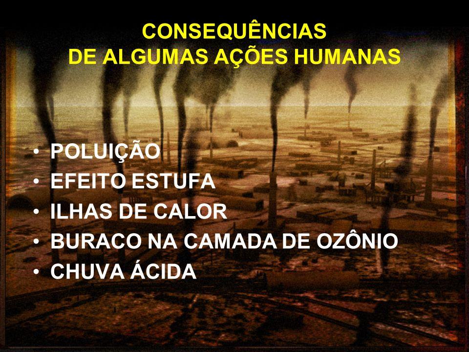 CONSEQUÊNCIAS DE ALGUMAS AÇÕES HUMANAS