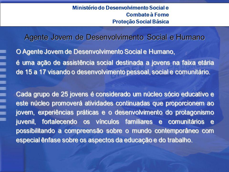 Agente Jovem de Desenvolvimento Social e Humano