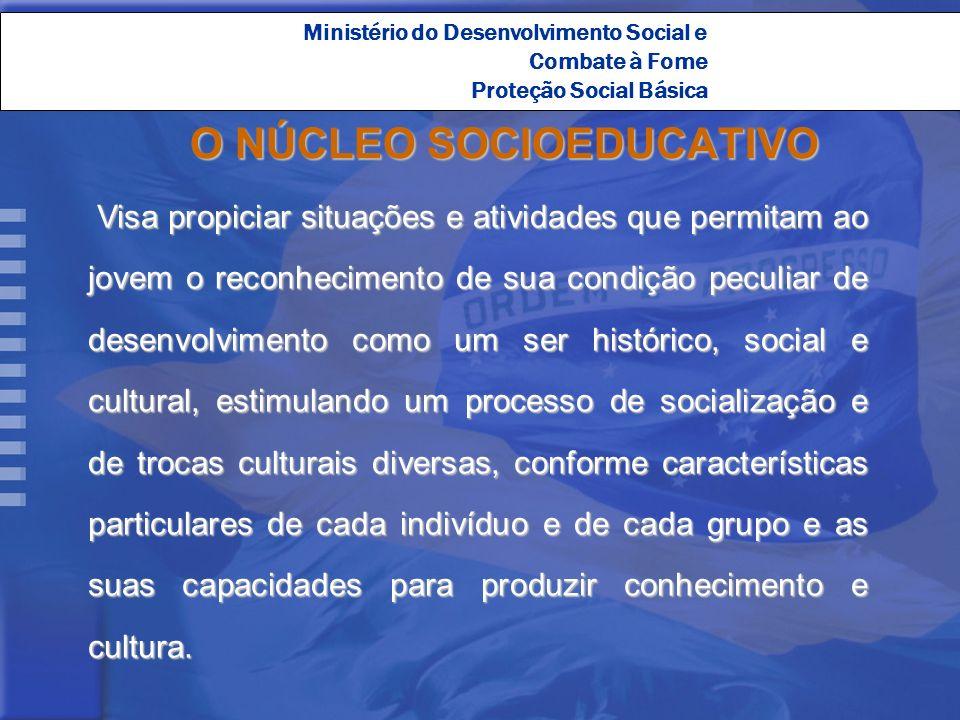 O NÚCLEO SOCIOEDUCATIVO