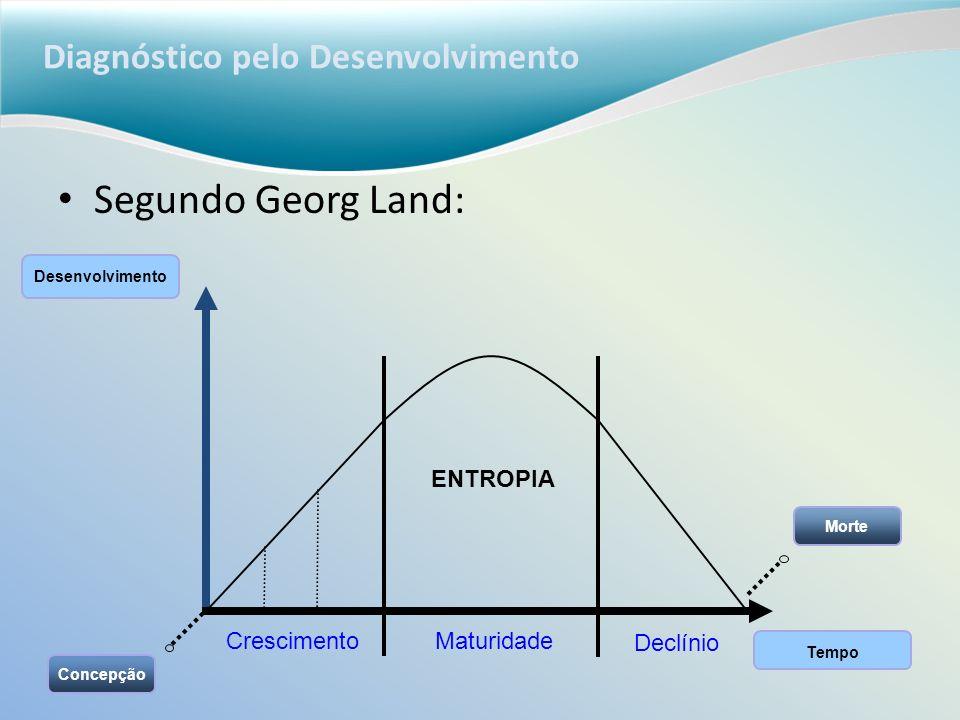 Diagnóstico pelo Desenvolvimento