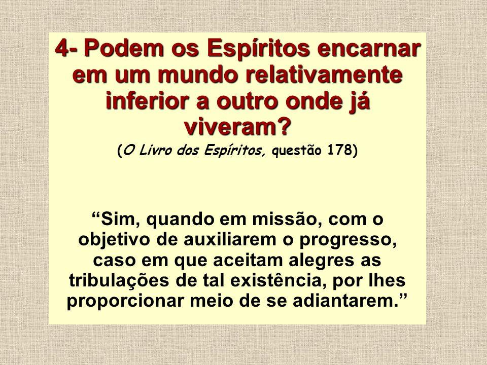 (O Livro dos Espíritos, questão 178)