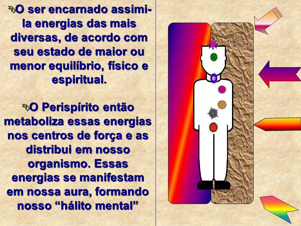 O ser encarnado assimi-la energias das mais diversas, de acordo com seu estado de maior ou menor equilíbrio, físico e espiritual.