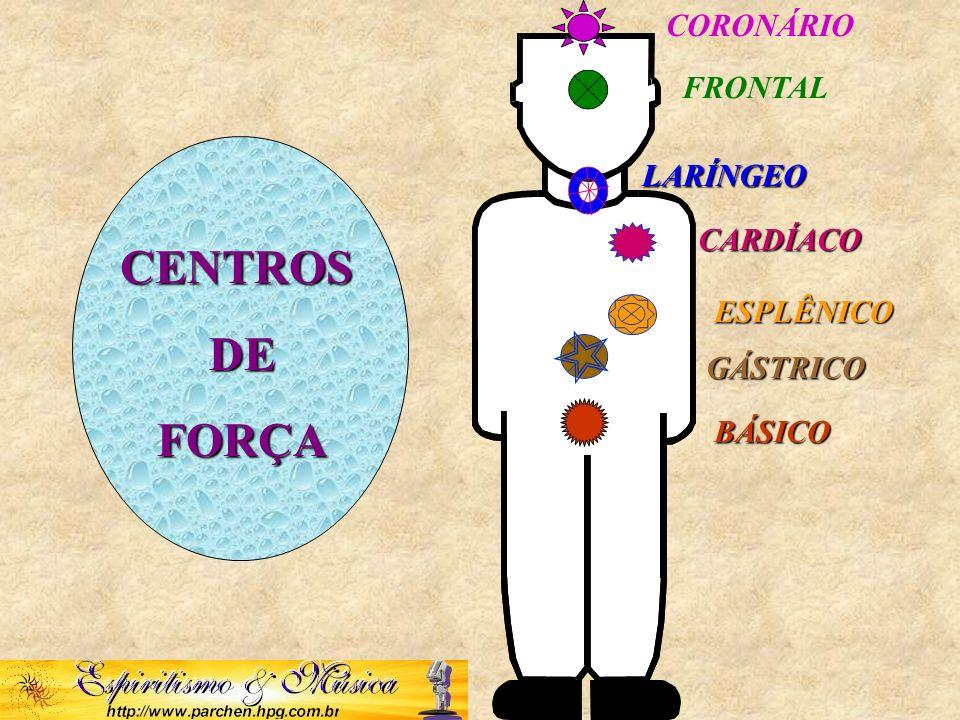 CENTROS DE FORÇA CORONÁRIO FRONTAL LARÍNGEO CARDÍACO ESPLÊNICO
