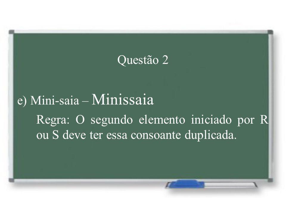Questão 2 e) Mini-saia – Minissaia.