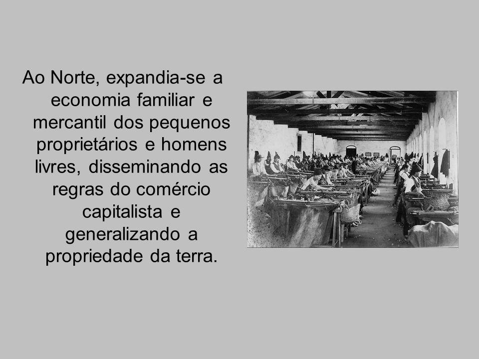 Ao Norte, expandia-se a economia familiar e mercantil dos pequenos proprietários e homens livres, disseminando as regras do comércio capitalista e generalizando a propriedade da terra.