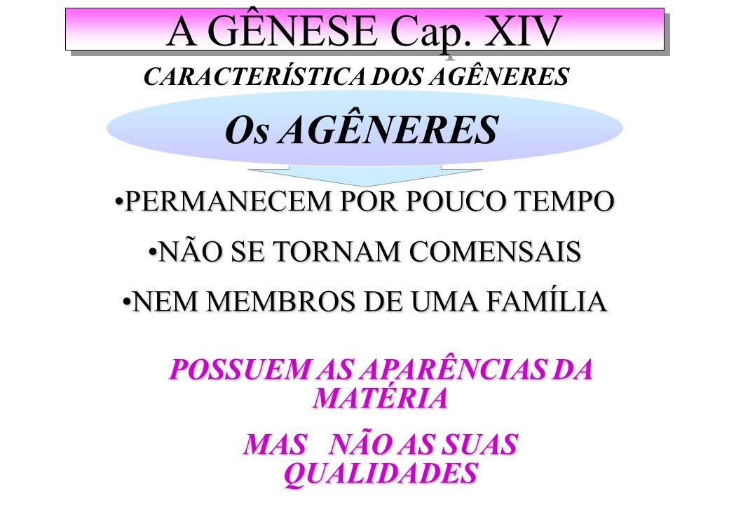 A GÊNESE Cap. XIV Os AGÊNERES PERMANECEM POR POUCO TEMPO