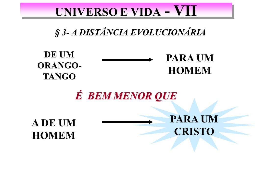§ 3- A DISTÂNCIA EVOLUCIONÁRIA