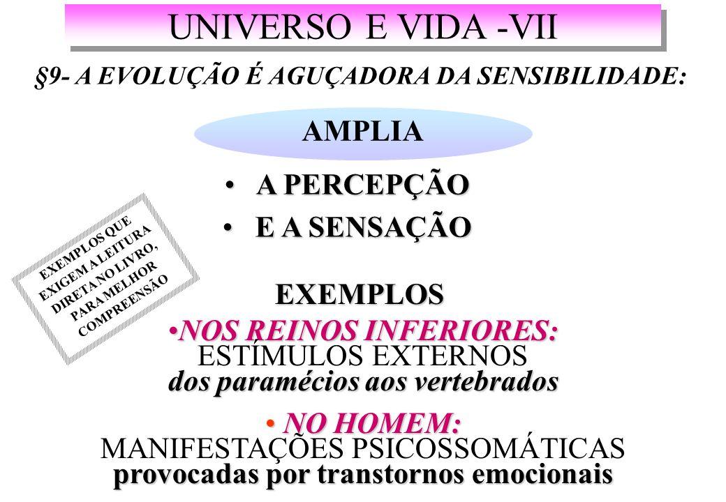 UNIVERSO E VIDA -VII AMPLIA A PERCEPÇÃO E A SENSAÇÃO EXEMPLOS