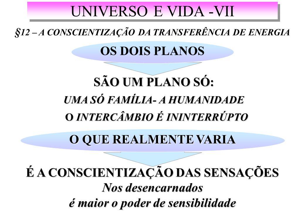 UNIVERSO E VIDA -VII OS DOIS PLANOS SÃO UM PLANO SÓ: