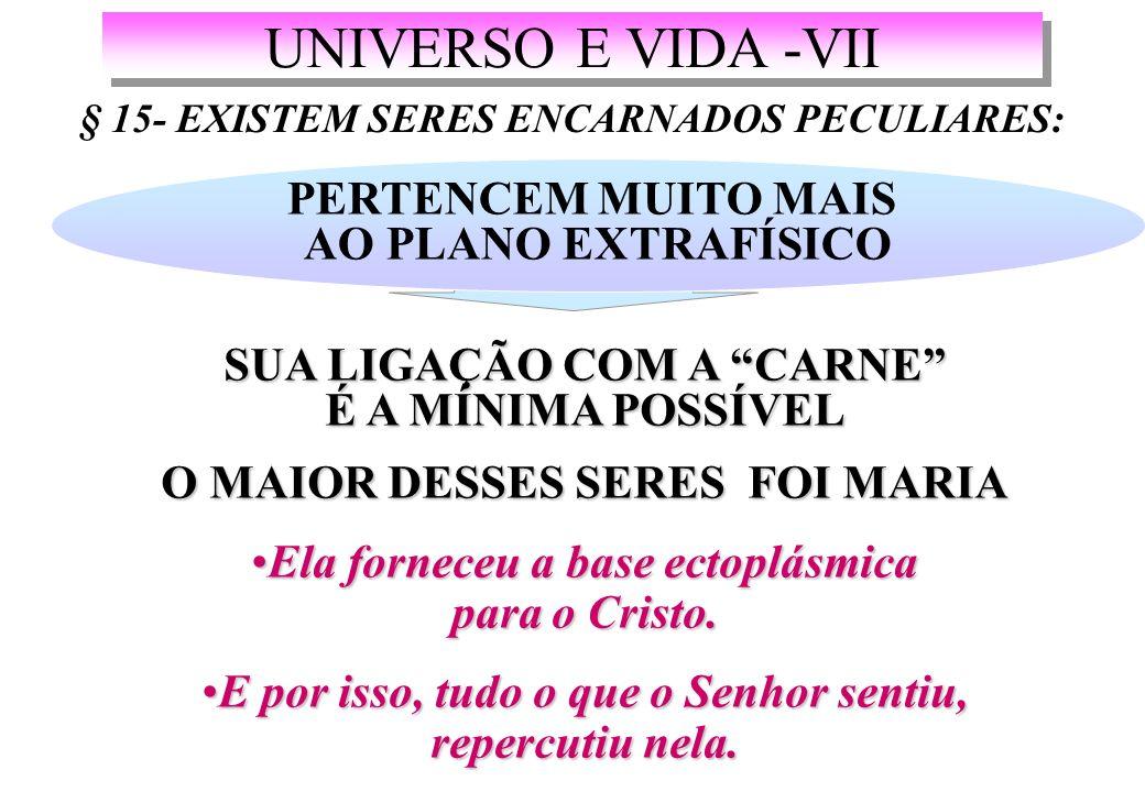 UNIVERSO E VIDA -VII PERTENCEM MUITO MAIS AO PLANO EXTRAFÍSICO