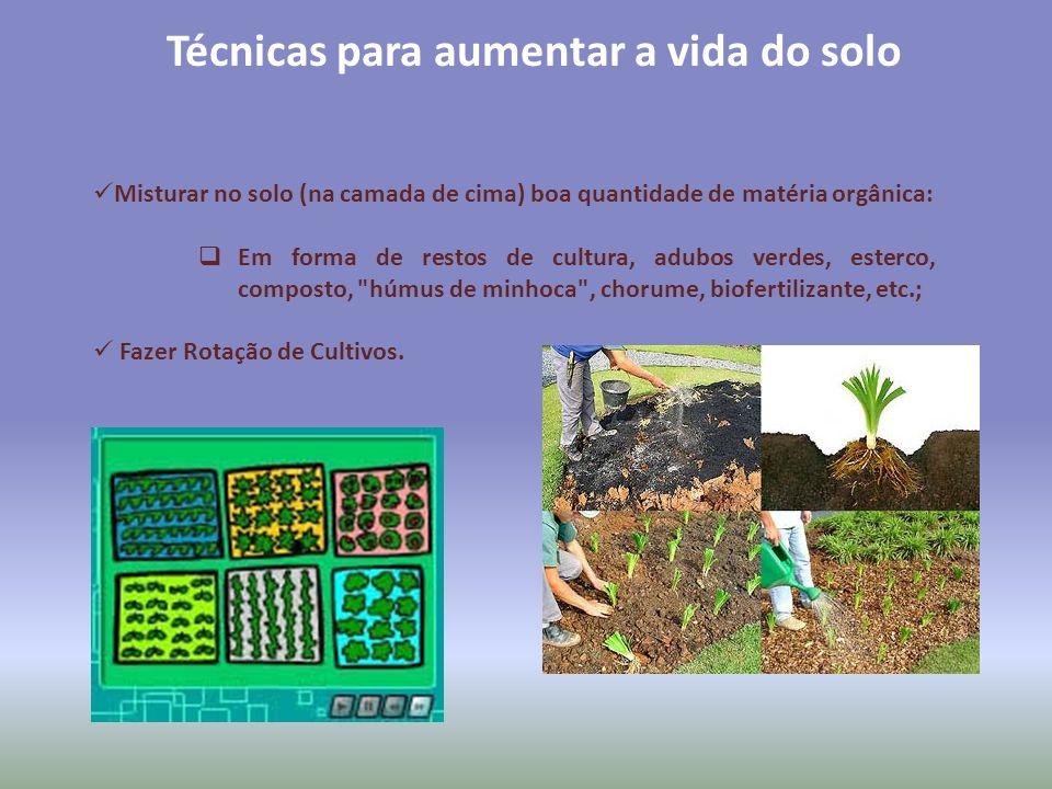 Técnicas para aumentar a vida do solo