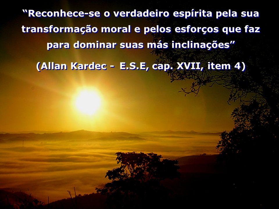(Allan Kardec - E.S.E, cap. XVII, item 4)
