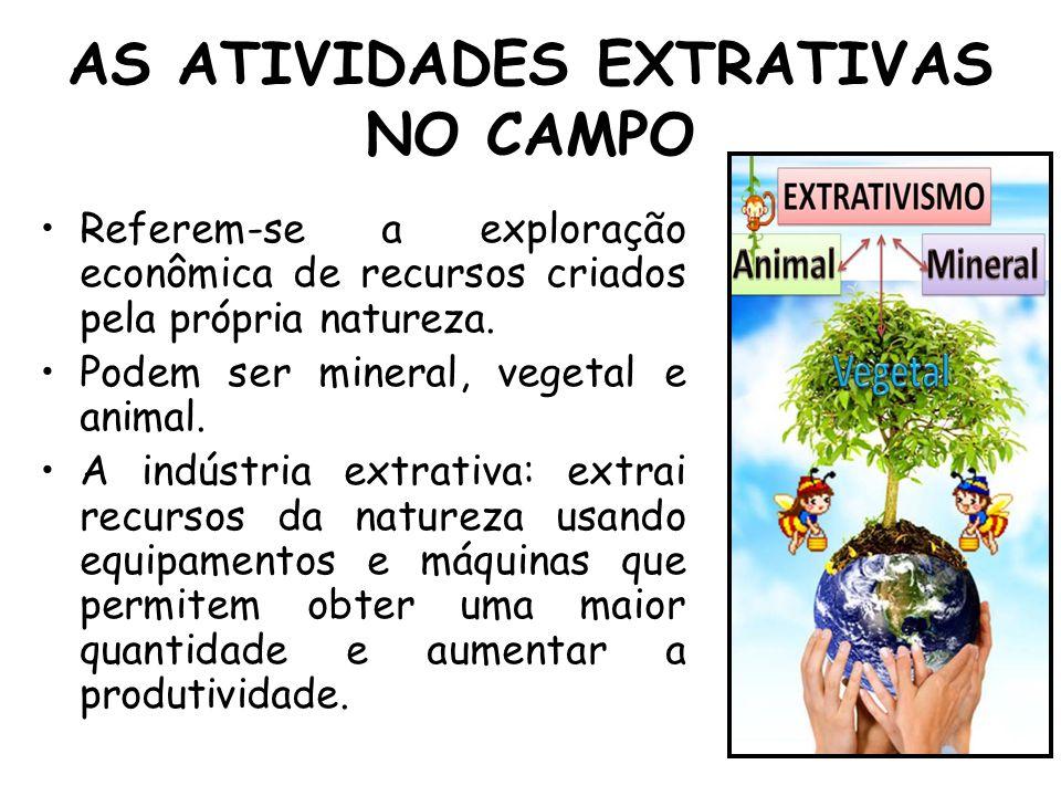 AS ATIVIDADES EXTRATIVAS NO CAMPO