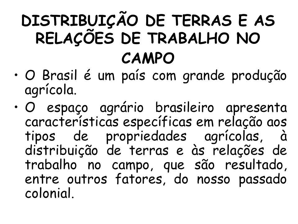 DISTRIBUIÇÃO DE TERRAS E AS RELAÇÕES DE TRABALHO NO CAMPO